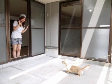 ワンコと私の夢空間 広がるふくらむ 30畳!のお部屋「サンフェアリーⅢ」